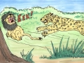 6-chased-by-leopard